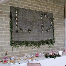 mur végétale à base de plantes vertes et de lières